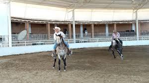 caballos Rancho los tres Potrillos